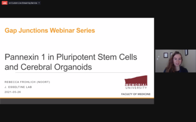 Seventh gap junction webinar featured three interesting investigations with Trond Aasen as chair